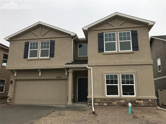 8043 Glory Drive, Colorado Springs, CO 80924 (#9775434) :: 8z Real Estate