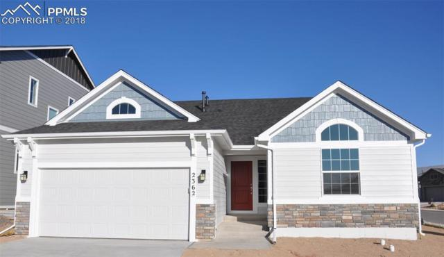 2362 Pelican Bay Drive, Monument, CO 80132 (#9788191) :: CC Signature Group