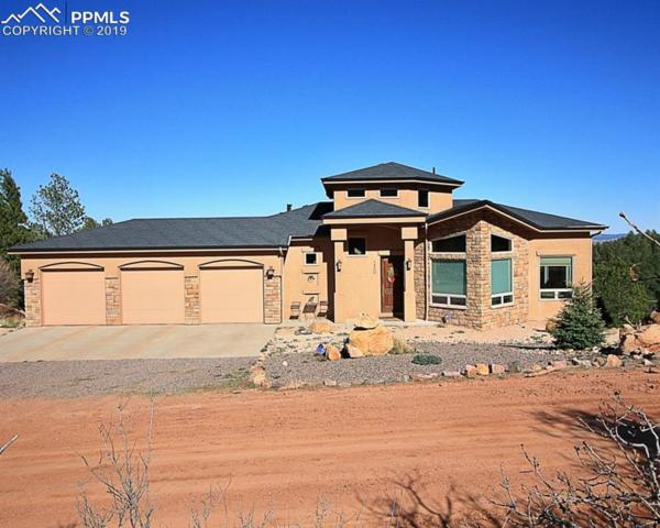 4880 Sandstone Drive, Monument, CO 80132 (#9887574) :: Action Team Realty