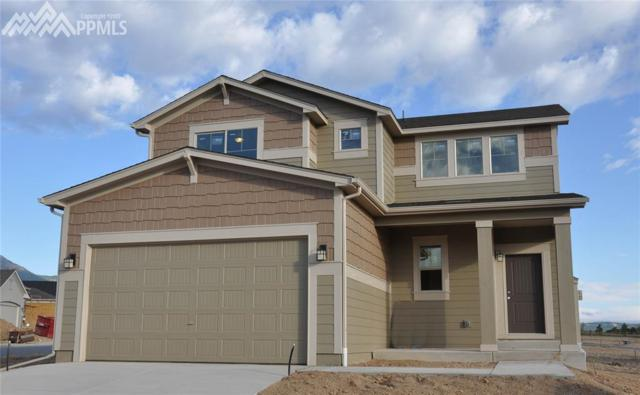 2392 Pelican Bay Drive, Monument, CO 80132 (#9894130) :: 8z Real Estate