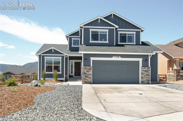 1156 Night Blue Circle, Monument, CO 80132 (#9902881) :: Action Team Realty