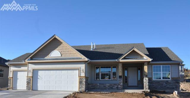 3130 Waterfront Drive, Monument, CO 80132 (#1039303) :: 8z Real Estate