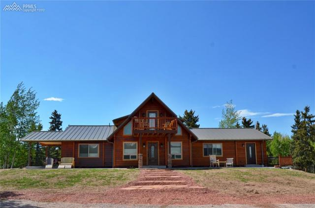 10257 W Highway 24, Divide, CO 80814 (#1276691) :: 8z Real Estate