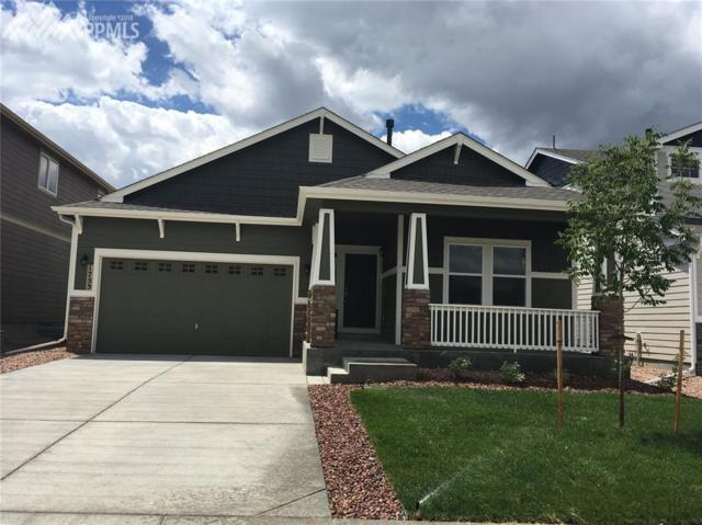 1755 Sandy Shore Lane, Monument, CO 80132 (#1321064) :: 8z Real Estate