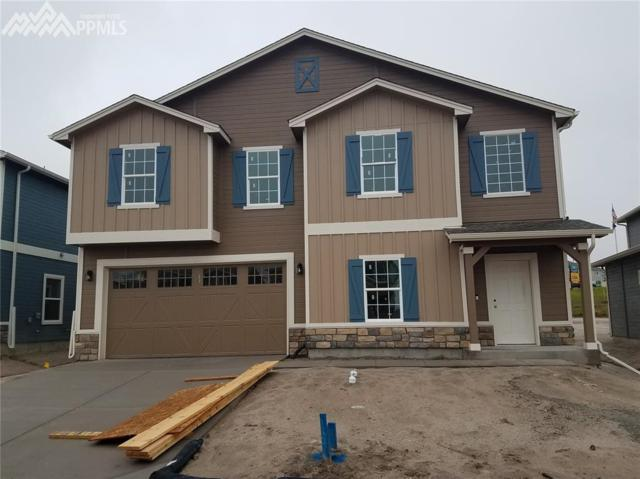 6561 Stonefly Drive, Colorado Springs, CO 80924 (#1525074) :: 8z Real Estate