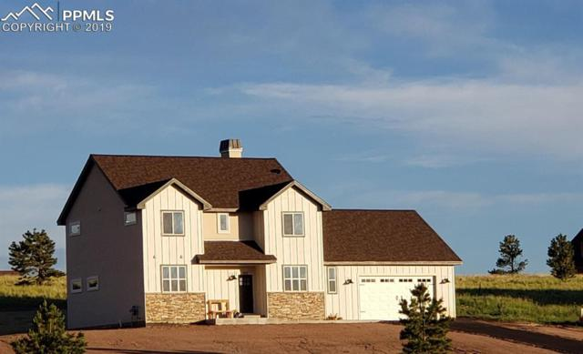 103 Samantha Way, Divide, CO 80814 (#1663460) :: Tommy Daly Home Team