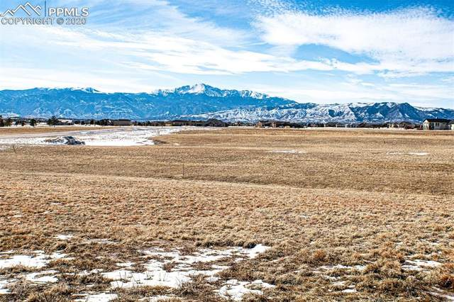 7832 Bannockburn Trail, Colorado Springs, CO 80908 (#1764857) :: 8z Real Estate