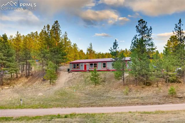 416 Mesa Drive, Florissant, CO 80816 (#2073546) :: Harling Real Estate