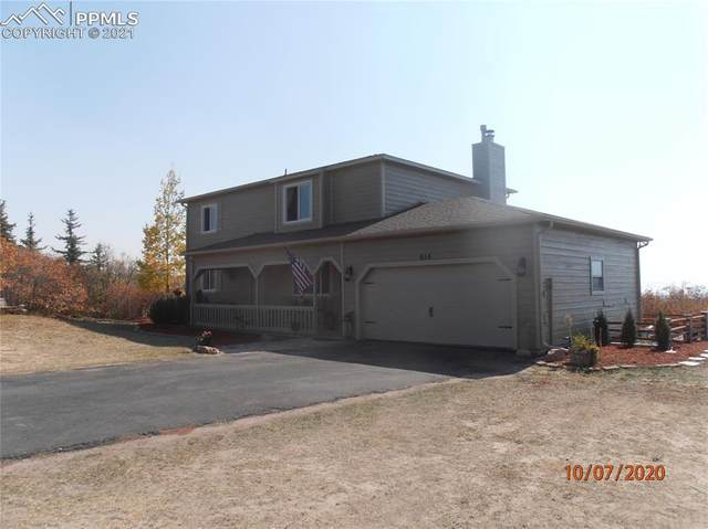 615 Harness Road, Monument, CO 80132 (#2275523) :: Action Team Realty
