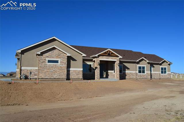 10864 Mckissick Road, Peyton, CO 80831 (#2395928) :: The Treasure Davis Team