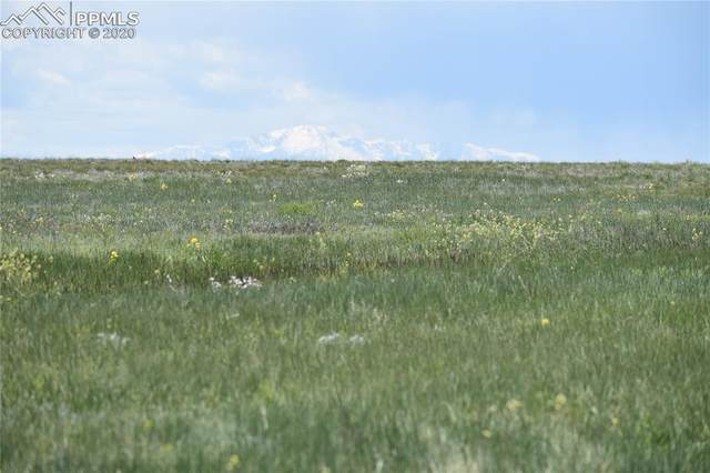 0000000 County Road 169, Matheson, CO 80830 (#2550532) :: HomeSmart