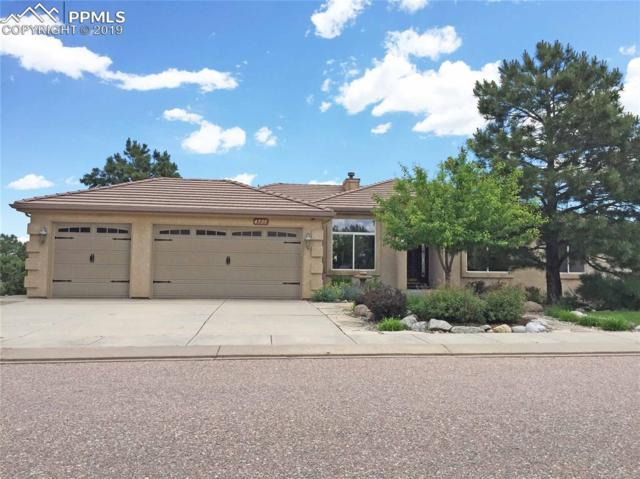 4595 Seton Hall Road, Colorado Springs, CO 80918 (#2611899) :: Perfect Properties powered by HomeTrackR