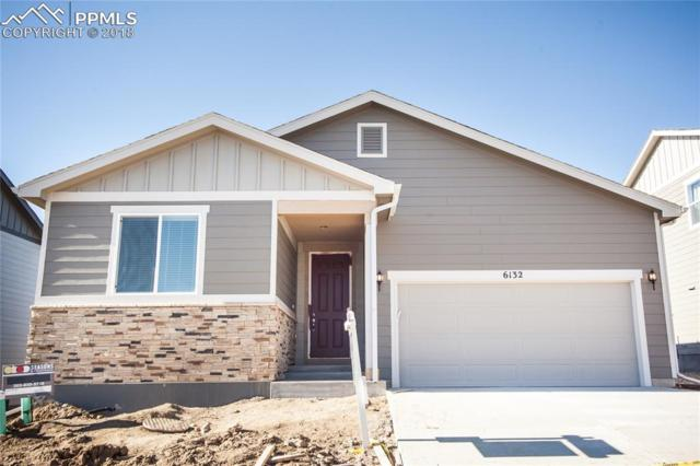 6132 Anders Ridge Lane, Colorado Springs, CO 80927 (#2716446) :: The Kibler Group