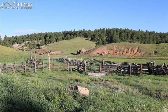 00 W Highway 24 Highway, Divide, CO 80814 (#2791729) :: CC Signature Group