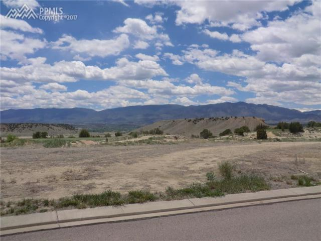 3543 Saddle Drive, Canon City, CO 81212 (#3024929) :: 8z Real Estate