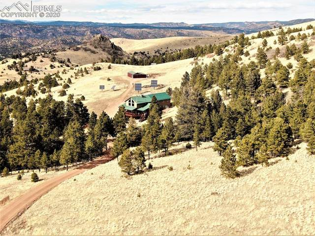 506 Sheep Springs Lane, Canon City, CO 81212 (#3139219) :: Action Team Realty