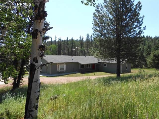 509 Lake Court, Divide, CO 80814 (#3243876) :: The Treasure Davis Team