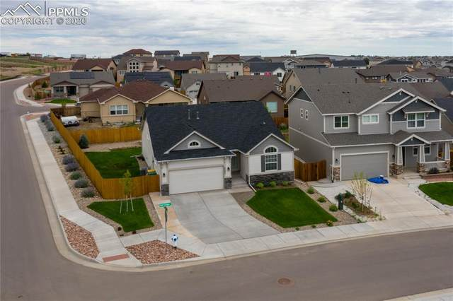 2597 Half Chaps Court, Colorado Springs, CO 80922 (#3266742) :: 8z Real Estate