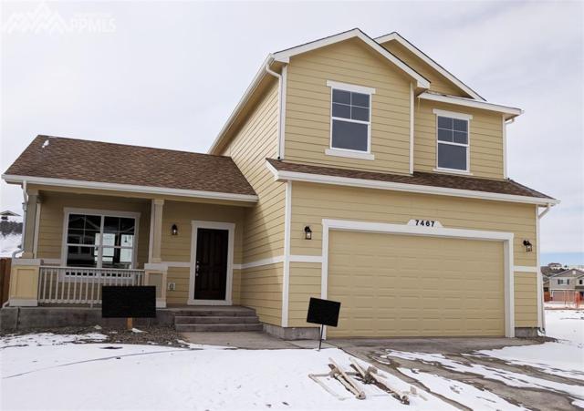 7467 Cat Tail Drive, Colorado Springs, CO 80923 (#3616116) :: 8z Real Estate