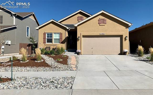 11021 Echo Canyon Drive, Colorado Springs, CO 80908 (#3675732) :: The Treasure Davis Team