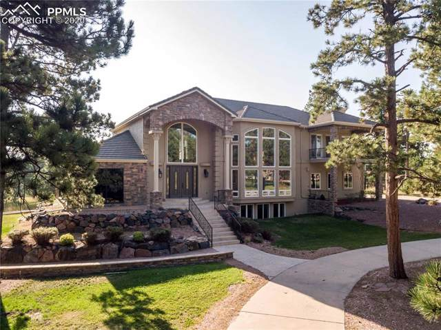 16204 Pole Pine Point, Colorado Springs, CO 80908 (#3943650) :: The Peak Properties Group