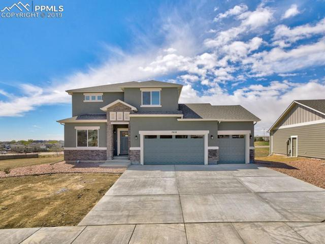 7828 Twin Creek Terrace, Fountain, CO 80817 (#3965602) :: Tommy Daly Home Team