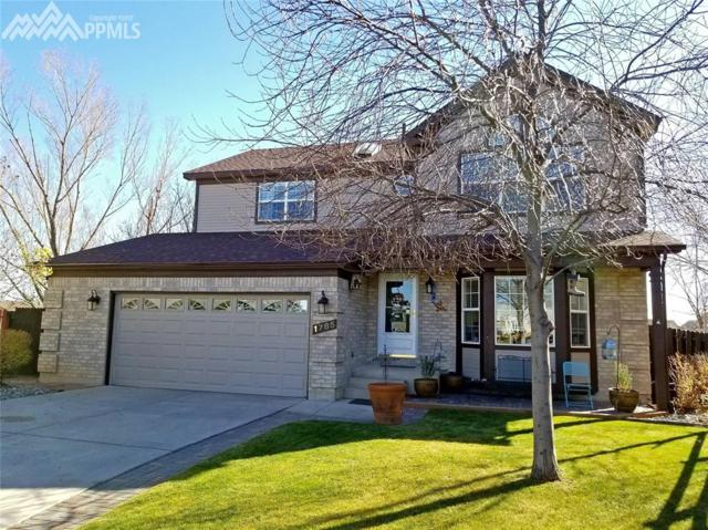 1785 Gumtree Court, Colorado Springs, CO 80906 (#3983531) :: The Daniels Team