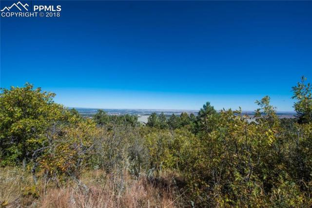 Lot 49 Stone Manor Heights, Colorado Springs, CO 80906 (#4071933) :: Action Team Realty