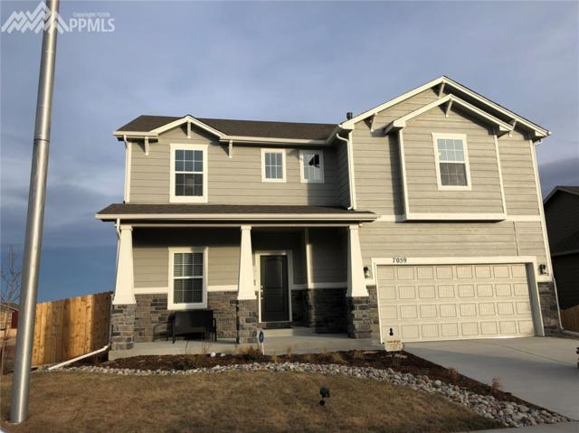 7059 Thorn Brush Way, Colorado Springs, CO 80923 (#4107644) :: Action Team Realty