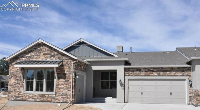 1636 Lazy Cat Lane, Monument, CO 80132 (#4156352) :: Action Team Realty
