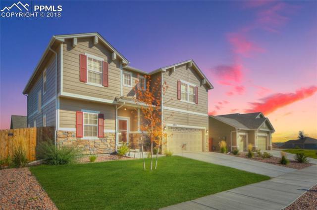6919 Thorn Brush Way, Colorado Springs, CO 80923 (#4197730) :: 8z Real Estate