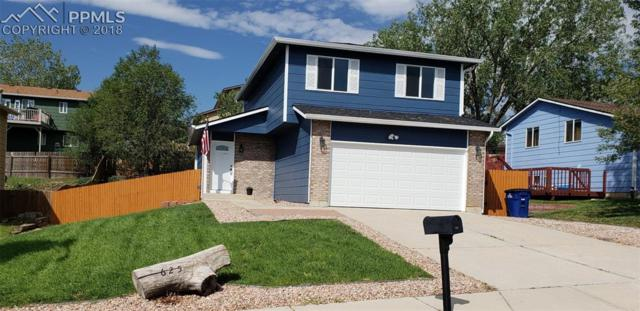 625 Harvest Field Way, Fountain, CO 80817 (#4282555) :: Jason Daniels & Associates at RE/MAX Millennium
