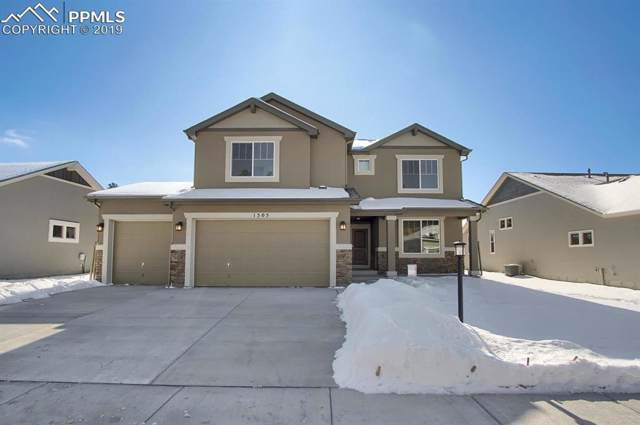 1505 Catnap Lane, Monument, CO 80132 (#4339906) :: 8z Real Estate