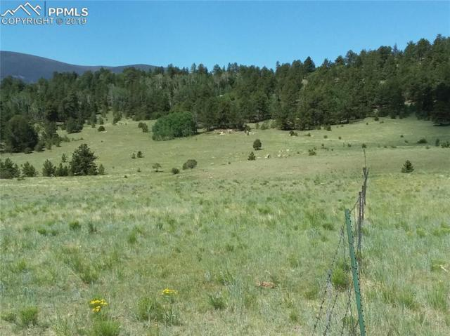 Lot 46 Autumn Creek Drive, Canon City, CO 81212 (#4430568) :: Tommy Daly Home Team