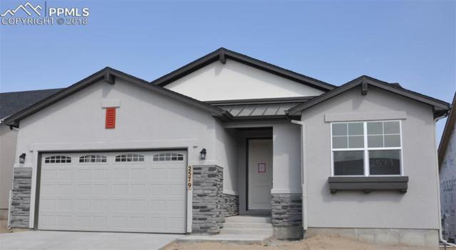 2579 Grand Prix Court, Colorado Springs, CO 80922 (#4497659) :: 8z Real Estate