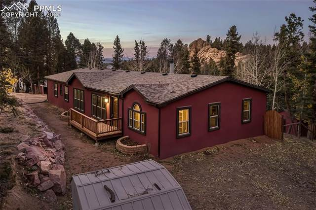 177 Donzi Trail, Florissant, CO 80816 (#4604211) :: Action Team Realty