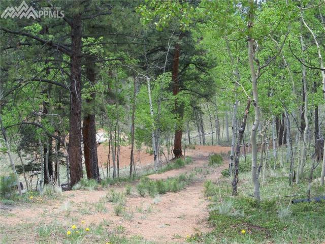 45 Valley Circle, Divide, CO 80814 (#4619572) :: 8z Real Estate