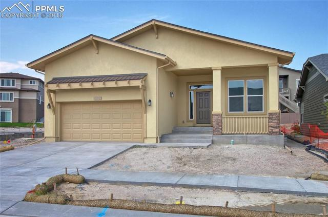 4218 Notch Trail, Colorado Springs, CO 80924 (#4621364) :: Harling Real Estate