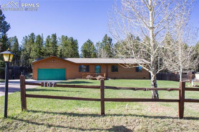 107 Glovers Lane, Woodland Park, CO 80863 (#4992251) :: Action Team Realty