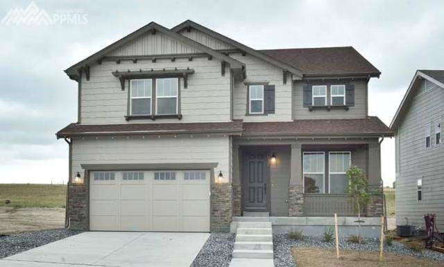 3908 Forever Circle, Castle Rock, CO 80109 (#5213448) :: 8z Real Estate