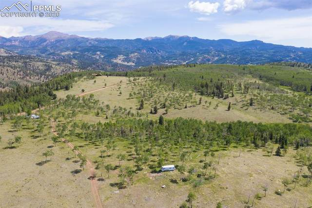 938 County Road 863 Road, Victor, CO 80860 (#5215438) :: 8z Real Estate