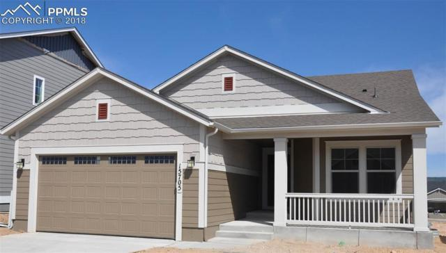 15705 Blue Pearl Court, Monument, CO 80132 (#5217447) :: Action Team Realty