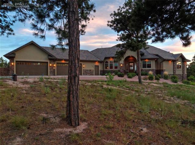 4455 Foxchase Way, Colorado Springs, CO 80908 (#5295928) :: 8z Real Estate