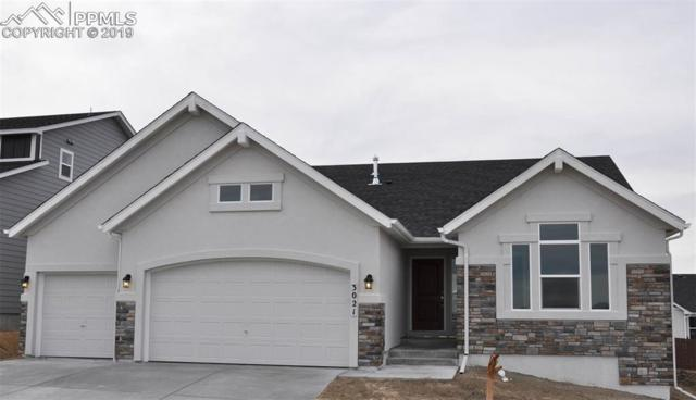 3021 Bright Moon Drive, Colorado Springs, CO 80908 (#5317041) :: Perfect Properties powered by HomeTrackR