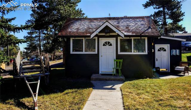 315 W South Avenue, Woodland Park, CO 80863 (#5373362) :: Action Team Realty