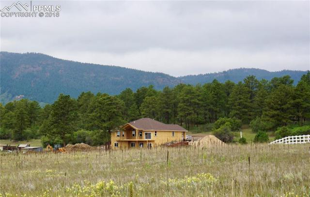601 Pioneer Haven Point, Palmer Lake, CO 80133 (#5530123) :: Venterra Real Estate LLC