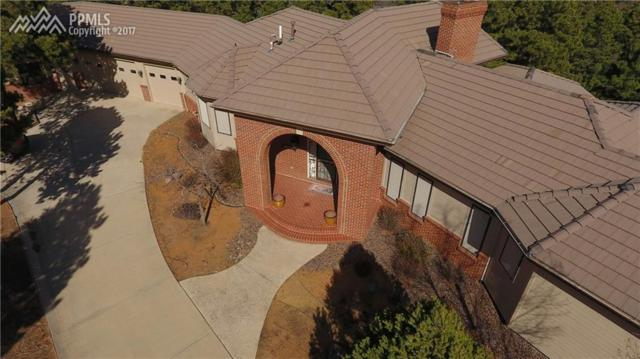 1030 Carina View, Colorado Springs, CO 80906 (#5827098) :: 8z Real Estate
