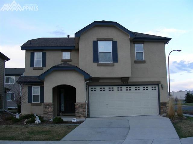 1603 Wildwood Pass Drive, Colorado Springs, CO 80921 (#6061018) :: 8z Real Estate
