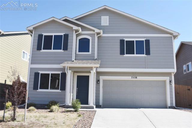 7538 Lost Pony Place, Colorado Springs, CO 80922 (#6076043) :: Jason Daniels & Associates at RE/MAX Millennium