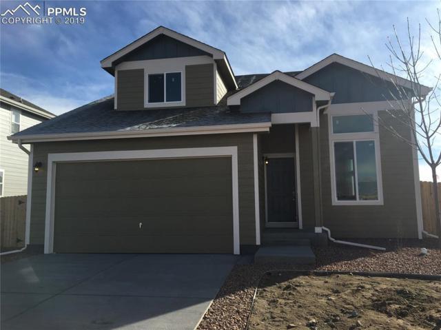 9635 Rubicon Drive, Colorado Springs, CO 80925 (#6313816) :: The Treasure Davis Team
